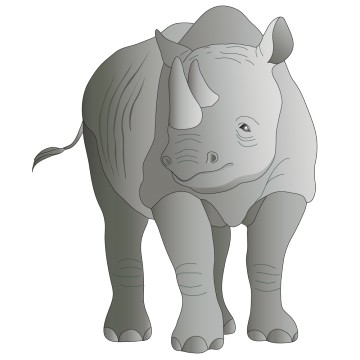 stickers Rhinoceros 2