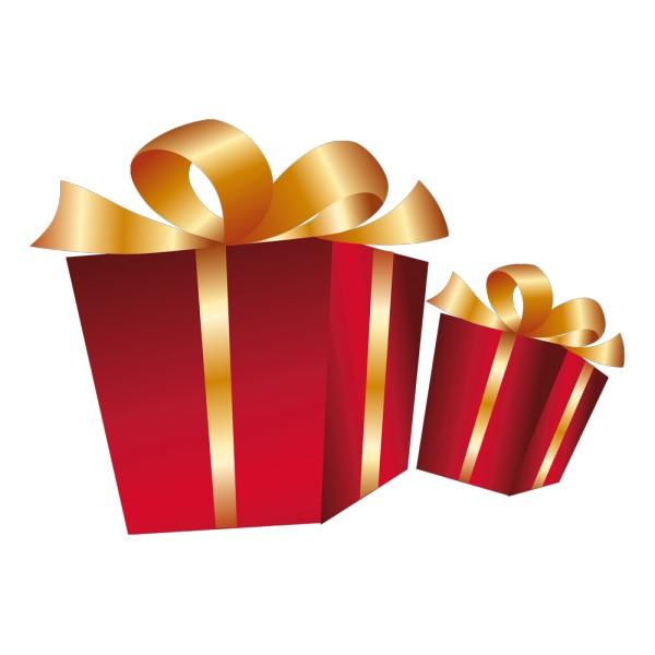 cadeau de noel pour deux