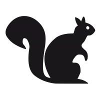 Écureuil 3
