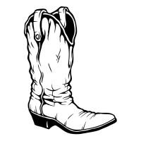 Botte de Cowboy 2