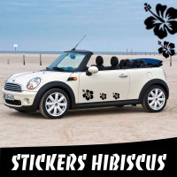 6 Stickers Tuning Voiture Hibiscus