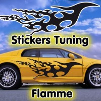 Stickers Tuning Flamme par 2 stf12