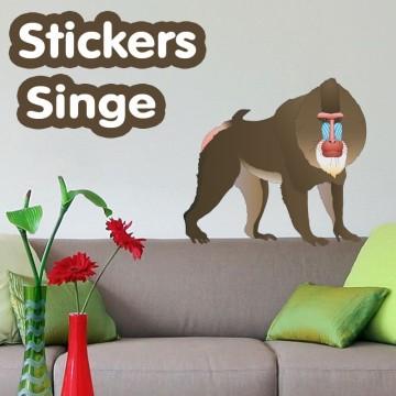 Stickers Singe