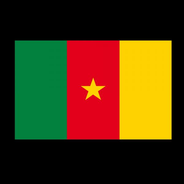 Recherche fille cameroun