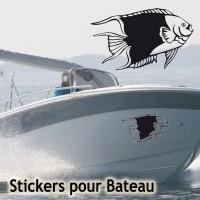 Stickers Adhésif Poisson  5