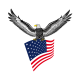 Stickers Autocollant Aigle USA