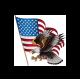 Stickers Autocollant Aigle US