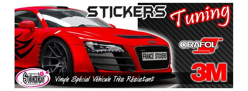 Stickers tuning look d 39 enfer pour pas cher france for Stickers exterieur personnalise
